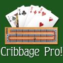 cribbage-pro.png