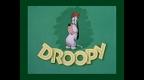 droopy.jpg