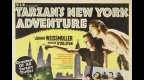 tarzan-s-new-york-adventure.jpg