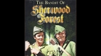 the-bandit-of-sherwood-forest.jpg