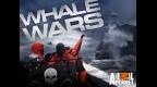 whale-wars.jpg